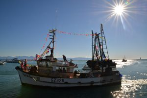 A decorated fishing boat makes it way past the crowds at the Blessing of the Fleet on Saturday. Photo by Brittany Spencer.
