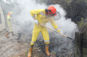 Firefighters work to dampen down scorched earth in Redwood Valley today. Photo: Evan Barnes.